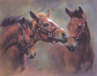 Brotherhood by Jacqueline Stanhope