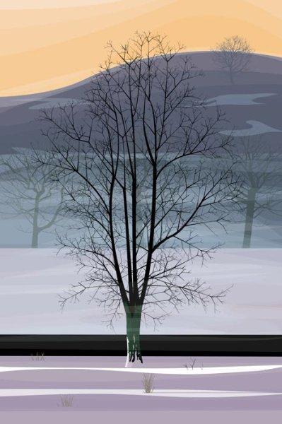 """Winter Sycamore"" by Dan Crisp"