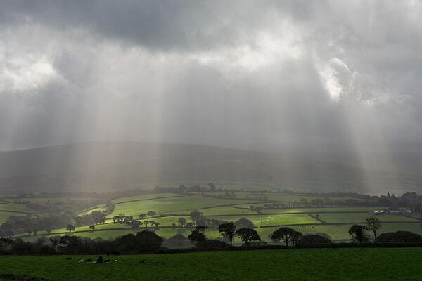 Dartmoor sun rays