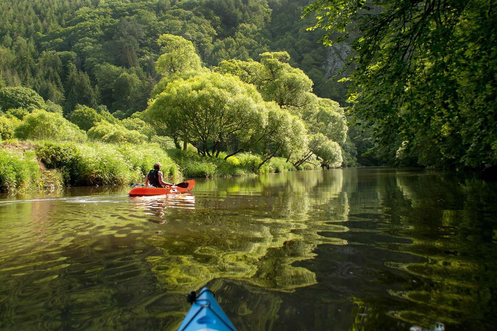 River Tamar kayaking
