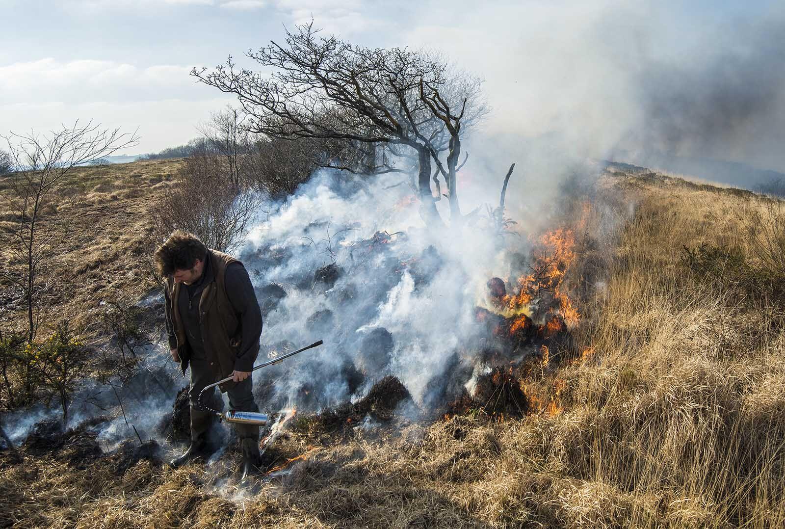 D.W.T grassland burn