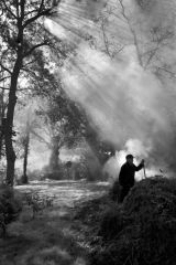 Gardener Burning off Leaves