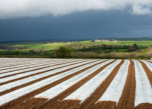 Crop protection.