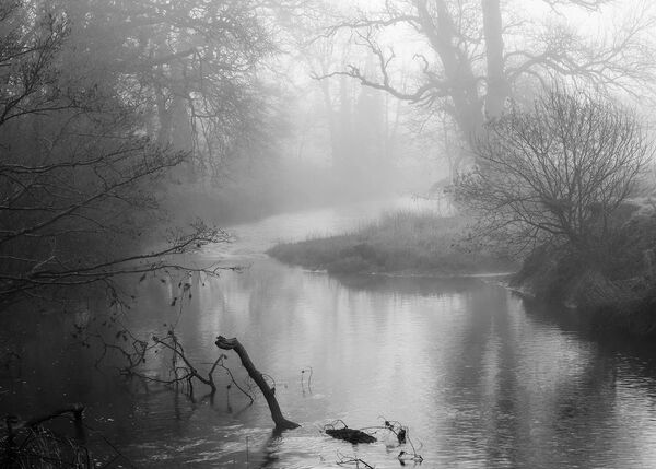 Nessy on the river Torridge.