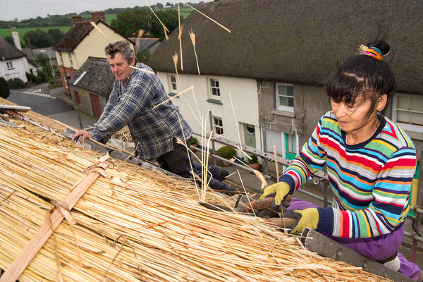 Pete and Yanping thatching