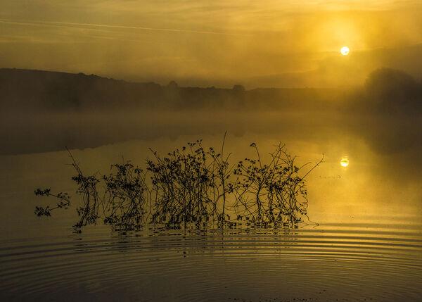 Meeth quarry lake at dawn.