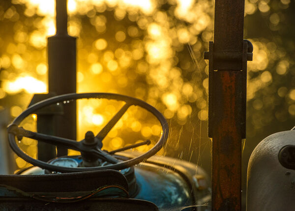 Old tractor dawn.