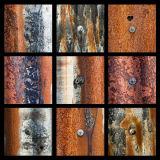 Corrugated nail x9