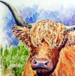 Highland Cow No.1 - Watercolour & Gouache