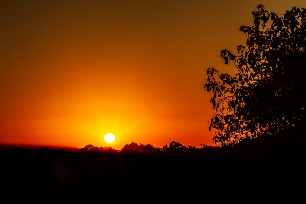 Sunrise at Mana Pools, Zimbabwe