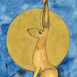 Moon Gazing Golden Hare