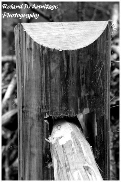 Woodland Gate Post
