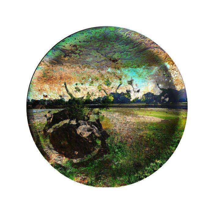 Infertile Landscapes Rebirthed III