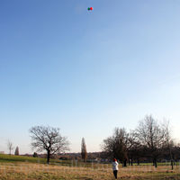 Flying high above Gladstone Park Meadow Cut 1