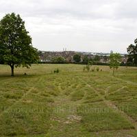 Gladstone Park Meadow 27th June 2011
