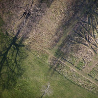 Gladstone Park Meadow Cut 1