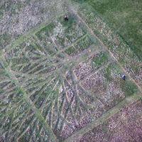 Gladstone Park Meadow Cut 1 3rd February 2012