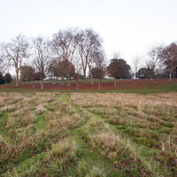 Gladstone Park Meadow Cut 1 looking North on the 15th November 2011