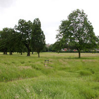 Gladstone Park Meadow Cut 1 on 19th June 2012