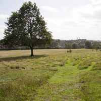 Gladstone Park Meadow Cut 1 on the 12th September 2011