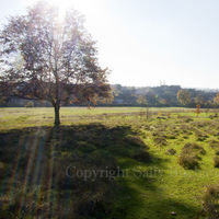 Gladstone Park Meadow Cut 1 on the14th November 2012