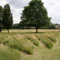 Gladstone Park Meadow Cut 1 on 28th July 2012
