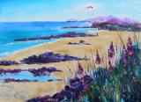 Lone Kiter on the Scottish Iles