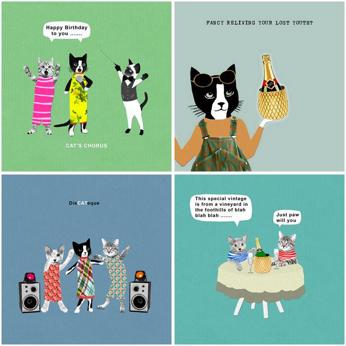 Kitty Bundle (CAT001, 004, 005, CC004)