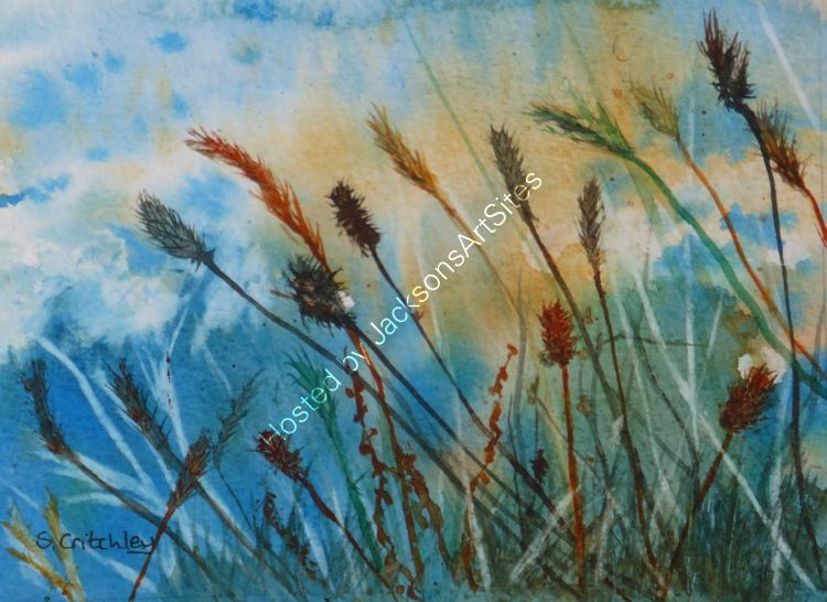 Hedgerow grasses