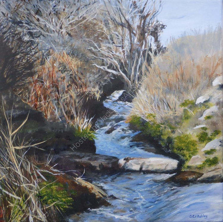 Flowing water, Penberth River