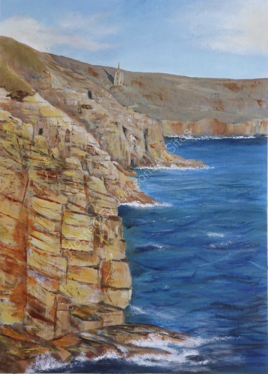 Late afternoon sun on Rinsey Cliffs