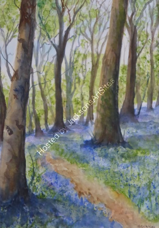 May Bluebells, Godolphin