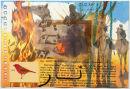 Senegal Fire Finch