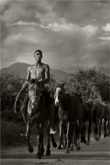 Young man with horses - Trinadad