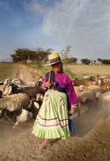 Herdswoman Peru