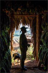 Tobaco farmer taking a break - Vinales