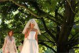 Venitian Wedding Scene