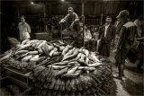 Yangon Fish Market - Myanmar