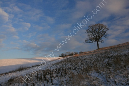 Winter in North Somerset
