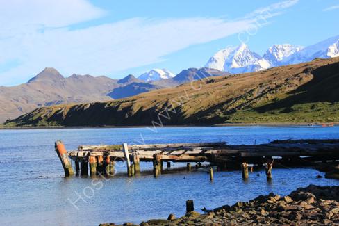 Old Pier, Grytviken