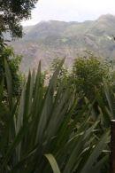 Flax & Diana's Peak, St Helena