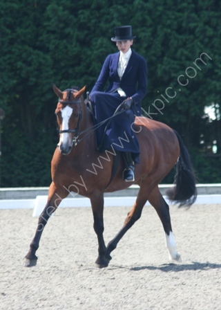 A Medium Dressage Test