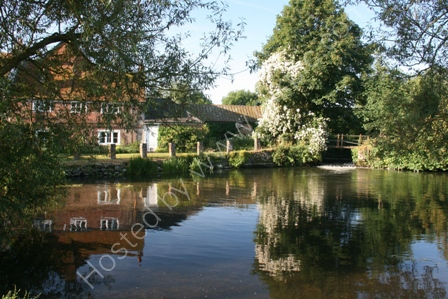 Mill Pool Reflections