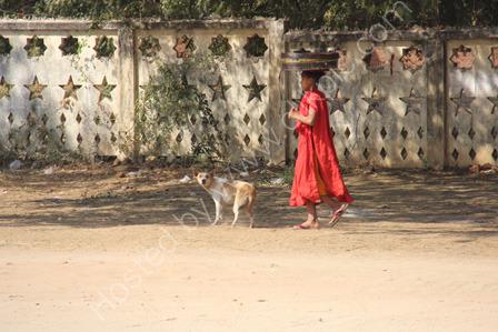 Monk with dog, Bagan