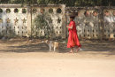Monk with dog, Bagan