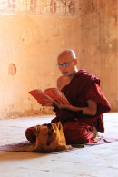 Monk Reading his Religious Text