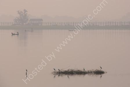 Herons on Taung-Tha-Man Lake