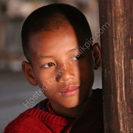 Watchful Novice Monk