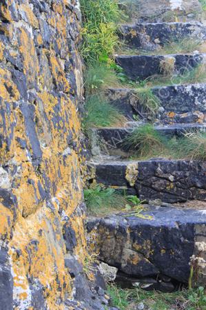 Harbour Steps at Mullion