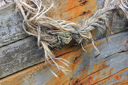 Old Rope at Mullion Harbour
